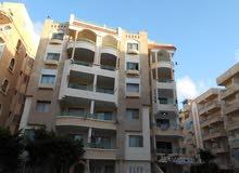 للبيع في الاسكندرية شاطئ النخيل  شقة 90م بواجهة بحري بجوار البحر
