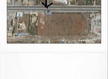 هكتار للايجار  طريق المطار على الرئيسي أمام مصنع الألبان بوعطني