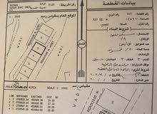 ارض سكنية للبيع في شناص بأسرار بني عمر غرب الشارع