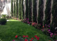 شقة فارغة الايجار 3نوم خلدا خلف مخابز براديس أرضية 180م مع حديقة 200م جديد لم تس