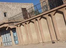 فله للبيع عشر لبن في صنعاء