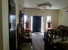 شقة فاخرة ارضية للبيع الياسمين 160م +ترس 20م - تتكون من 3 نوم واحد ماستر صالون ومعيشة منفصلة