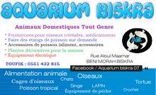 aquarium Biskra vente et acheter toutes les animaux