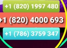 رقم هاتف أميركي للواتساب