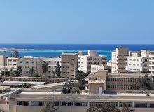 More than 5 apartment for sale - Marsa Matrouh