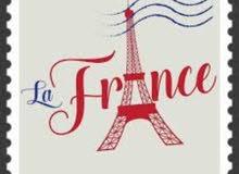 مدرس لغة فرنسية. تونسي الجنسية