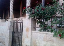 شقة في السابع ط ارضي بمدخل خاص وتراس امامي وحديقة للايجار
