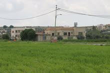 مزرعة مع بيت ريفي للبيع في الروضة طريق مادبا الغربي