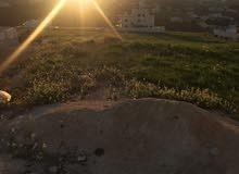 قطعة ارض للبيع حوض عيون الذيب شفا بدران