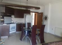 Best price 100 sqm apartment for rent in AmmanAl Rabiah