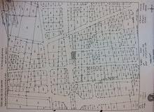بنايه للبيع شارع الهاشمي غرب مخابزنبيل ع شارع رئيسي