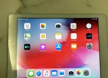 iPad Air 1 32gb  grey