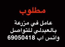 مطلوب عامل في مزرعة في العبدلي للتواصل واتس اب 69050418