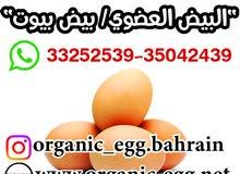 بيض عضوي ORGANIC EGG