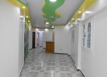 شقة للبيع في شاطئ النخيل الاسكندرية - 90م مسجلة بجوار الخدمات
