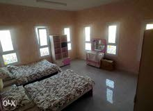 apartment for rent in BosherGhala