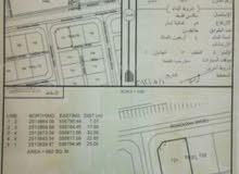 عز ولاية منح أرض سكنية للبيع موقع إستراتيجي