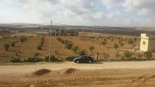 أرض 11.5 دونم للبيع الذهيبة الغربية