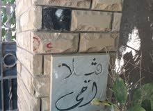 فيلا مسجلة بشارع أبو يوسف القديم الرئيسى شارع مدرسة الأورمان