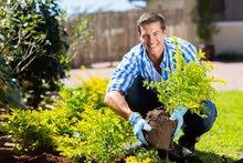 bricolage de jardin