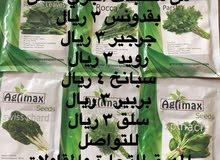 بيع بذور زراعية وموسمية