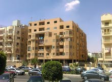 apartment for sale Fifth Floor - New Cairo