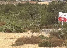 ارض للبيع مساحتها 1635متر مربع علي ثلاث شوارع في منطقة شحات وفيها شهادة عقاريه