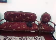 تخم مصري زان 10 مقاعد