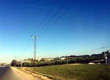 قطعـة أرض للــبيــع على شارع المطار التنموي الجديد في منطقة مارس زيدان قرب الطنيب - اللبن