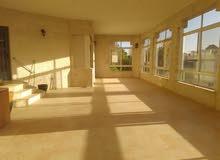 شقة ارضية من فيلا فارغة للايجار - عبدون