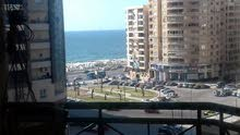 special apartment in Alexandria for rent