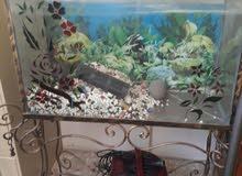 حوض سمك مستعمل