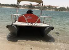 قارب صيد صغير صناعه نيوزلينديه محرك 40 جديد