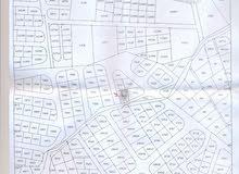 أرض للبيع في منطقه البتراوي -حي المسامير