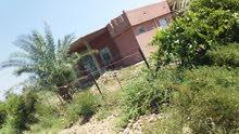 بيت جديد للبيع السعر بي مجااال