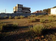 بيع قطع أرض على حافة الطريق بني بلعيد - جيجل