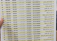 السلام عليكم شباب عندي حمام فايز بجنحه من شيخ سعد ومن نعمانيه وبغداد وكركوك  وعن
