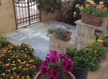 شقه أرضيه مميزه+حديقه مع 2ترس امامي و2كراج واسع مسقف ضد الشمس.