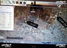مزرعه13 دونم للبيع  -مادبا-الفيصليه-الجازل غرب دوار الطياره 2 كم
