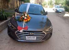 Hyundai Elantra in Cairo for rent