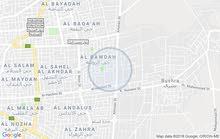 اربد الحي الشرقي حديقه تونس