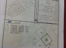 أرض سكنية في هيما أبو مضابي