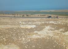 قطعة ارض مطله على البحر قرب الوالبدية كلم 5 طريق الجديدة