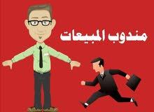 انتداب مندوبي مبيعات بقطر