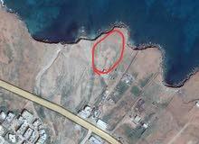 شاليه على ارض 2000م عالبحر (شهادة عقارية)