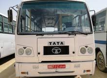 باص تاتا 66 راكب 2007