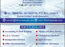 ACCOUNTING  & VAT SERVICES , VISA SERVICES , TYPING SERVICES