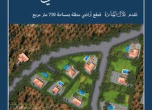 ارض 750 م للبيع في جرش سوف    على دفعات