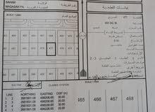 ثلاث أراضي للبيع في صحم منطقة مقاعسه عند بيوت الحكومه قريب الشارع البحري