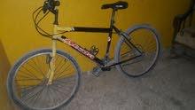 دراج باحل المتز
